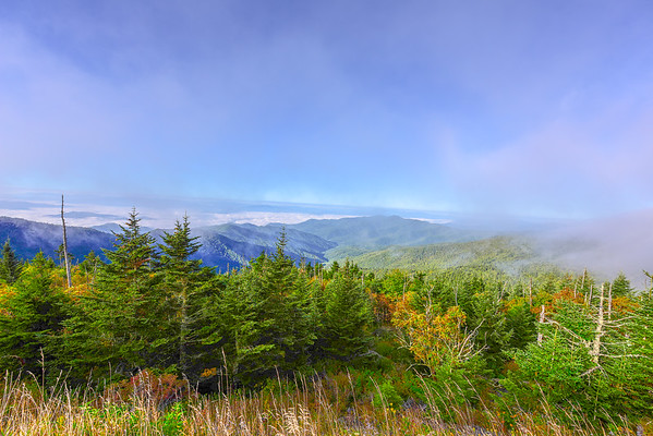 Smoky Mountains 184