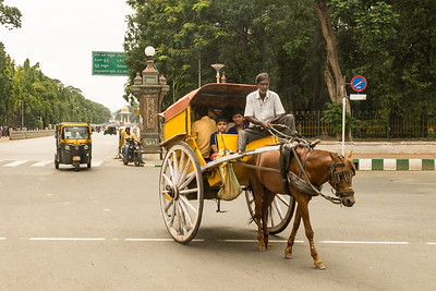 Out and about in Mysore