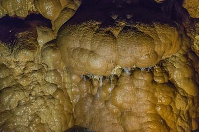 Harrison's Caves