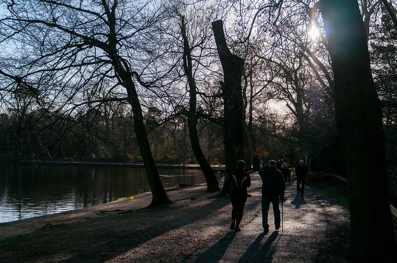 Black Park Jan 2013