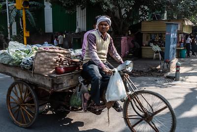 Delhi_Nov2018-029