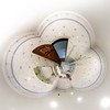 House interior in little planet view style