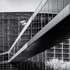 Europarliament in Strasbourg, glass wal infrared view
