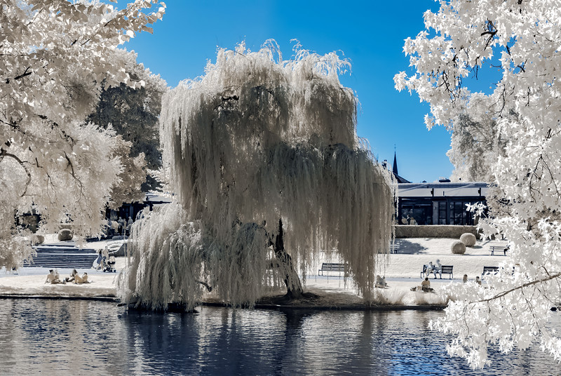 Natural public park in Strasbourg, infrared view, sunny day