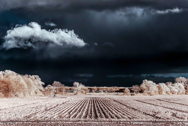 Cntrast infrared landscape, countryside view