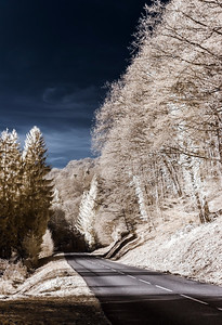 Contrast infrared view of the road in countryside