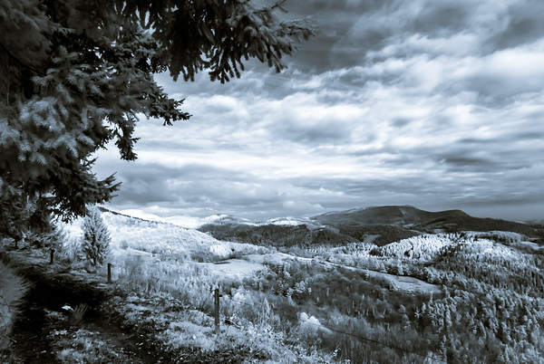 Bea Beautiful natural landscape in infrared view