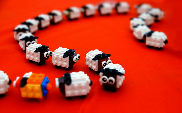 Lego exibition