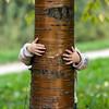 Little girl hide over the tree