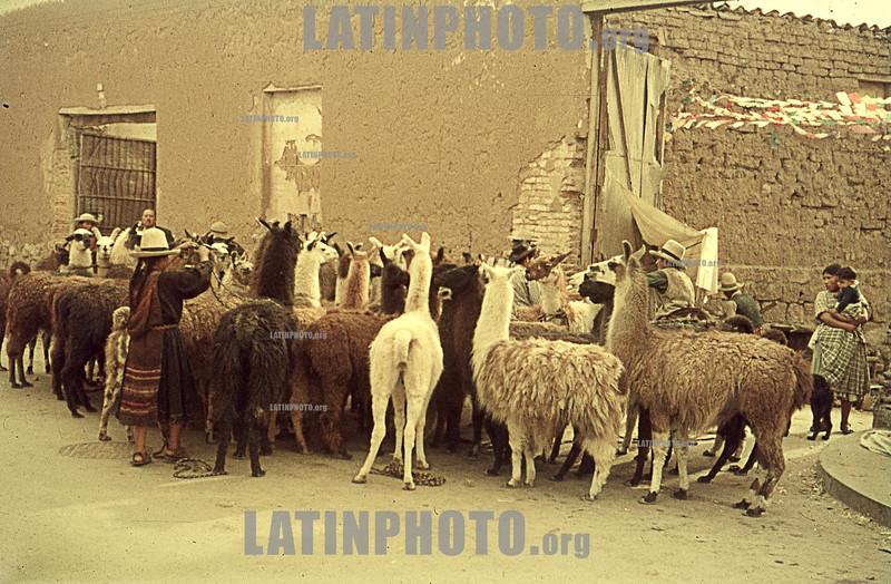 Peru : Sudamerica 1967 Peru / South America 1967 / Peru : Markt © Michel Marcu/LATINPHOTO.org