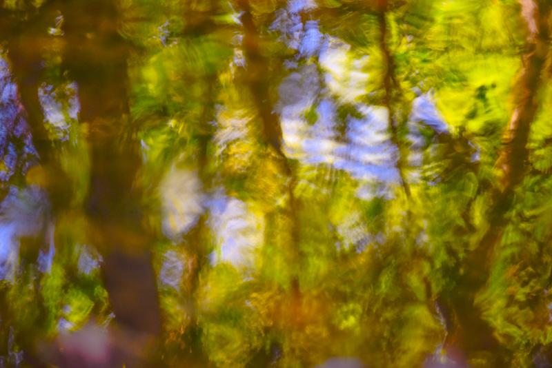 REFLECT  16
