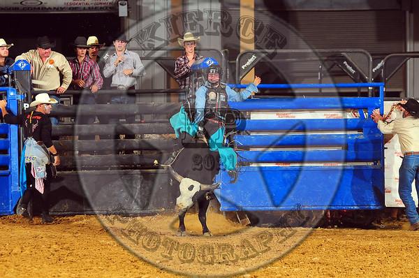 Ultimate bull riding & Bullfights