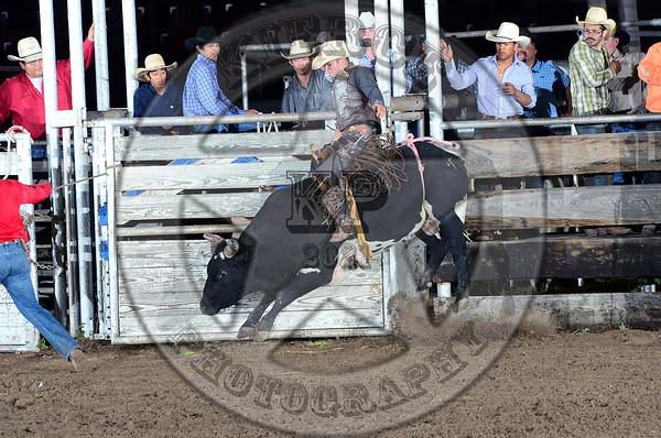 Live Oak County Bull Bash 3-22-13