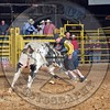 Bull Fighters-DSC_8202