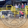 Bull Fighters-DSC_8092