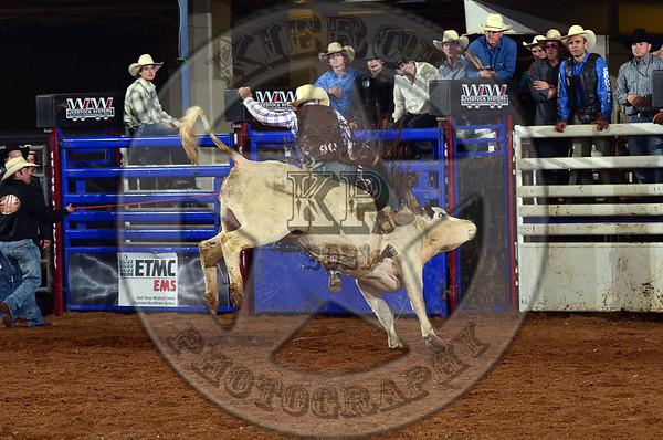 Heart of Texas Challenge 4-6-13
