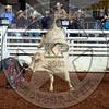 RD 2 Bulls (117)
