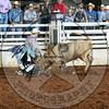 RD 2 Jr Steer- (146)