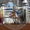 Jake Dunham-RD 3 JR Steers- (184)