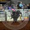RD 2 Bulls (198)