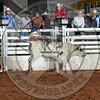 RD 2 Jr Steer- (160)