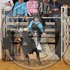BRANDEN WILLNER-CR-CPRA- (76)