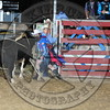 Bull Fighters-000_8614