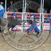 Bull Fighters-000_8629