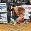 Bull Fighters-DSC_1746