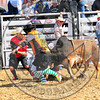 Bull Fighters-DSC_1582