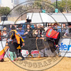 Bull Fighters-DSC_1679