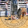 Bull Fighters-DSC_1579