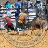 Bull Fighters-DSC_1585