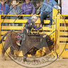 DAMON QUANTOCK-MBR-NFR-WED-2- (90)