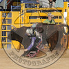DAMON QUANTOCK-MBR-NFR-WED-2- (95)
