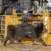 DAMON QUANTOCK-MBR-NFR-WED-2- (93)