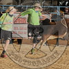 BULL FIGHTERS-MINI-SUN-1- (68)