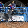 Bull Fighters-021