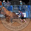 Bull Fighters-014