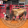 CP-PBR-BUDD WILLIAMSON (38)