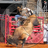 CP-PBR-BUDD WILLIAMSON (37)