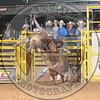 DWIN ROLAND- COWBOYS- PBR-  (52)