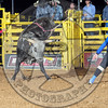 Bull Fighters-SA-4-PBR- (67)