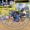 Bull Fighters-SA-4-PBR- (17)