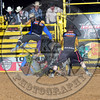 Bull Fighters-SA-4-PBR- (16)