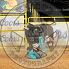 BUDD WILLIAMSON-PBR- (90)