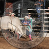 BULL FIGHTER-CBR-GD-4- (13)