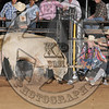 BULL FIGHTER-CBR-GD-4- (35)