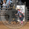BULL FIGHTER-CBR-GD-6- (29)