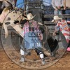 BULL FIGHTER-CBR-GD-4- (9)